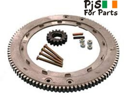 Briggs and Stratton Ring Gear