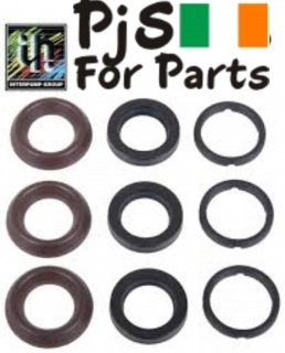 Interpump Kit 196 water seals