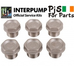 Interpump kit 5 Valve caps WS201,202,others