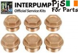 Interpump kit 84 Valve caps WW55,WW56,others